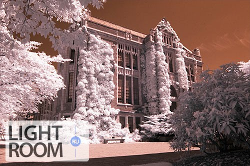 basic-infrared-tutorial-pic2