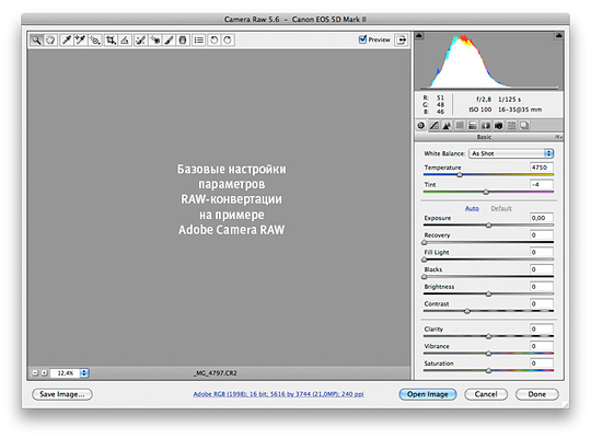 Базовые настройки RAW-конвертации на примере Adobe Camera RAW