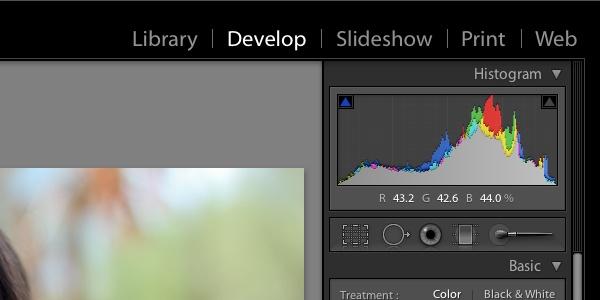 Гистограмма в Adobe Lightroom